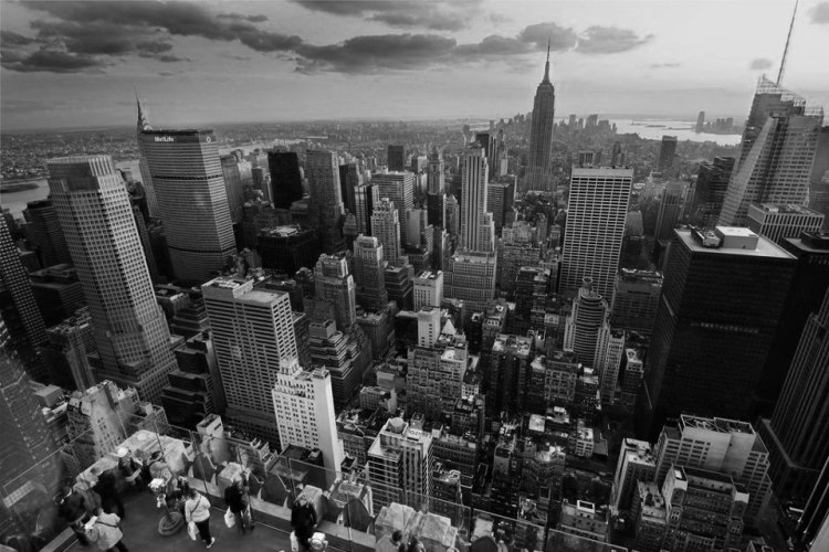 ny hans black and white